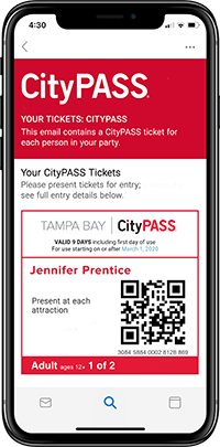 Tampa Bay Ticket