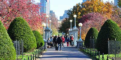 Beyond Fall Foliage: Things to Do in Boston in Fall