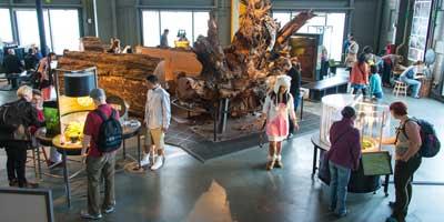 Adventure Into The World Of Science At The Exploratorium